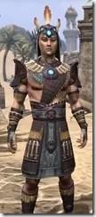 Elder Argonian Rubedo Leather - Male Close Front
