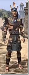 Elder Argonian Rubedo Leather - Male Front