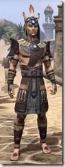 Elder Argonian Rubedo Leather - Male Front