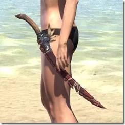 Elder Argonian Sword 1