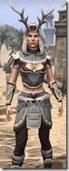 Huntsman Ancestor Silk - Female Shirt Close Front