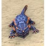 Lava Line Salamander