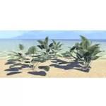 Plant Cluster, Spadeleaf