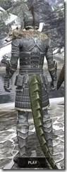 Silver Dawn Iron - Argonian Male Rear