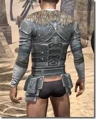 Silver Dawn Iron Cuirass - Male Rear