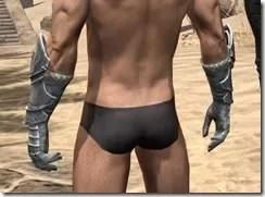 Silver Dawn Iron Gauntlets - Male Rear