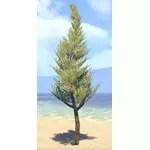 Tree, Marsh Cypress