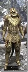 Auroran Knight Argonian Male Front