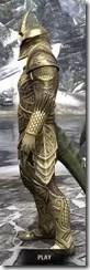 Auroran Knight Argonian Male Side