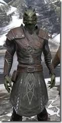 Austere Warden - Argonian Male Close Front