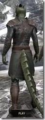 Austere Warden - Argonian Male Rear
