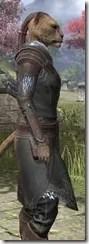 Austere Warden - Khajiit Female Close Side