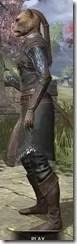 Austere Warden - Khajiit Female Side