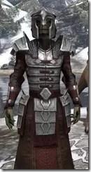 Battlemage Tribune Armor - Argonian Male Close Front