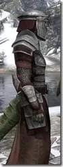 Battlemage Tribune Armor - Argonian Male Close Side