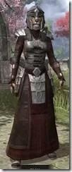 Battlemage Tribune Armor - Khajiit Female Front