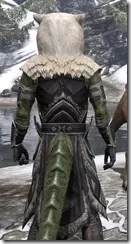 Cavalier of the Sworn Oath - Argonian Male Close Rear