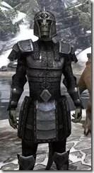 Centurion Field Armor - Argonian Male Close Front