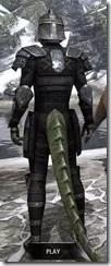 Centurion Field Armor - Argonian Male Rear