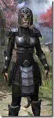 Centurion Field Armor - Khajiit Female Close Front