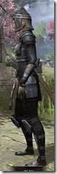 Centurion Field Armor - Khajiit Female Side