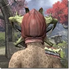 Chokethorn - Khajiit Female Rear