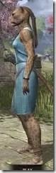 City Isle Tunic Dress - Khajiit Female Side