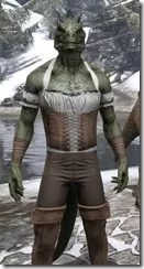 Corseted Riding Outfit - Argonian Male Close Front