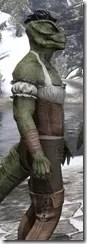 Corseted Riding Outfit - Argonian Male Close Side
