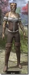Corseted Riding Outfit - Khajiit Female Front