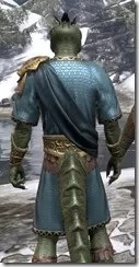 Elder Council Tunic and Sash - Argonian Male Close Rear