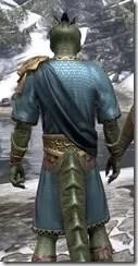 Elder Council Tunic and Sash - Argonian Male Close Rear