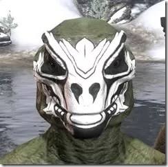 Floral Skull Face Tattoo Argonian Male Front