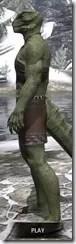 Graht-Climber's Active Wear - Argonian Male Side