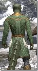 Kinlord's Alinor Attire Argonian Male Close Rear