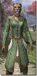 Kinlord's Alinor Attire Khajiit Female Close Front