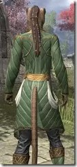 Kinlord's Alinor Attire Khajiit Female Close Rear