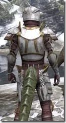 Lion Guard Elite - Argonian Male Close Rear