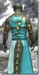 Nibenese Noble's Shawled Robe Argonian Male Close Rear