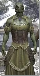 Off-the-Shoulder Evening Dress - Argonian Male Close Front