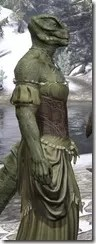 Off-the-Shoulder Evening Dress - Argonian Male Close Side