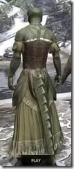Off-the-Shoulder Evening Dress - Argonian Male Rear