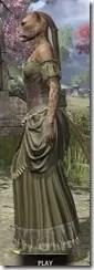 Off-the-Shoulder Evening Dress - Khajiit Female Side