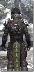 Reach Winter Heavy - Argonian Male Close Rear