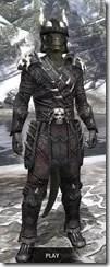 Reach Winter Heavy - Argonian Male Front