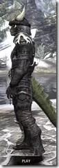 Reach Winter Heavy - Argonian Male Side