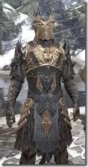 Renegade Dragon Priest Argonian Male Close Front