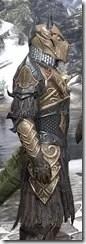Renegade Dragon Priest Argonian Male Close Side