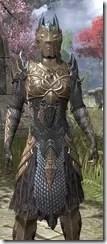 Renegade Dragon Priest Khajiit Female Close Front