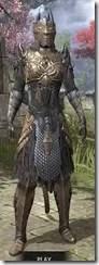 Renegade Dragon Priest Khajiit Female Front